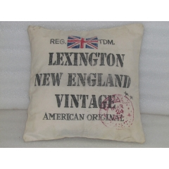 Lexington Canvas cushion