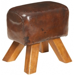 Leather Seater